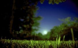 moon-50233_640